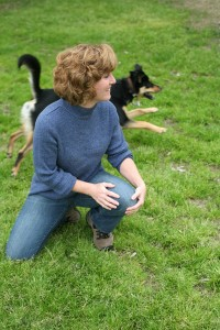Kelly's Training Doggie Daycare and Boarding dog and puppy training